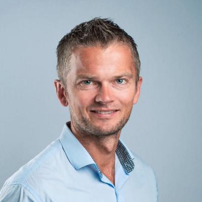 Øystein Sæbø, professor